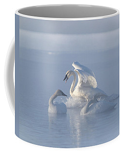 Coffee Mug featuring the photograph Trumpeter Swans - Three's Company by Patti Deters