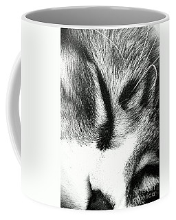 Coffee Mug featuring the photograph Sweet Dreams by Jacqueline McReynolds