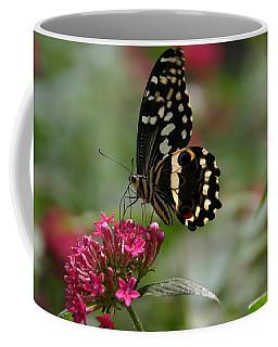 Coffee Mug featuring the photograph Sweet Nectar by Denyse Duhaime