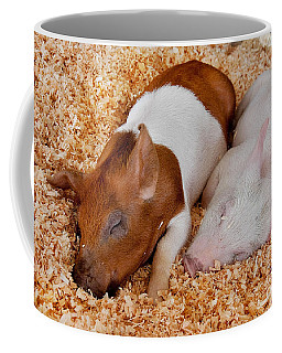 Sweet Piglets Nap Art Prints Coffee Mug by Valerie Garner