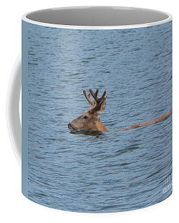 Swimming Deer Coffee Mug