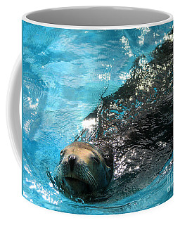 Coffee Mug featuring the photograph Swimming Sea Lion by Kristine Merc