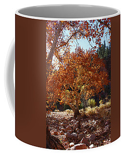 Sycamore Trees Fall Colors Coffee Mug