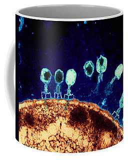 T-bacteriophages And E-coli Coffee Mug