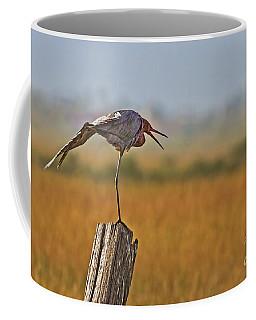 Tai Chi At Daybreak Coffee Mug