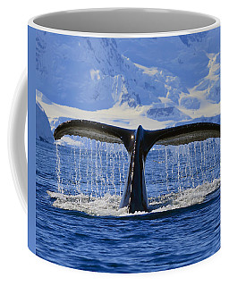 Tails From Antarctica Coffee Mug