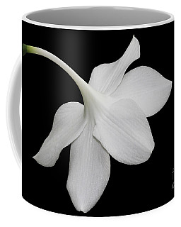 Take A Bow Coffee Mug by Judy Whitton