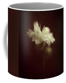 Take Me To The Secret Place Where All Your Dreams Come True Coffee Mug