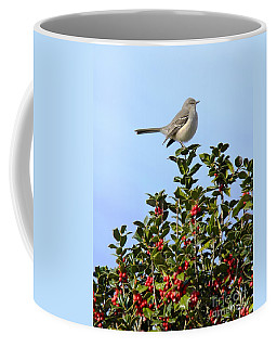 Take My Picture Feb 2014 Coffee Mug