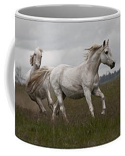 Coffee Mug featuring the photograph Talegating 5924 by Wes and Dotty Weber