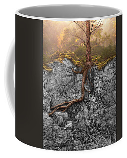 Coffee Mug featuring the photograph Taproot by Mary Jo Allen