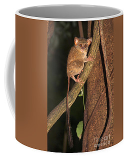 Coffee Mug featuring the photograph Tarsius Tarsier  by Sergey Lukashin