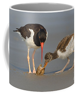 Teaching The Young Coffee Mug by Jerry Fornarotto