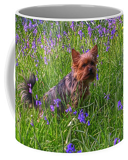 Teddy Amongst The Bluebells Coffee Mug