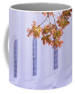 Temple Accent Coffee Mug