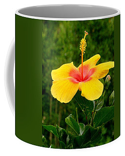 Tequila Sunrise Coffee Mug