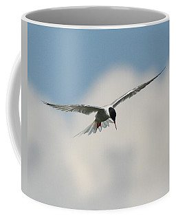 Tern In Flight Coffee Mug