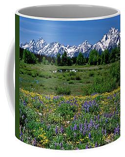 Teton Grandeur Coffee Mug by Ed  Riche
