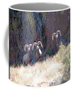 The 3 Amigos Coffee Mug