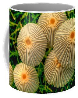 Coffee Mug featuring the photograph The Ants Raised Their Umbrellas by Dennis Baswell