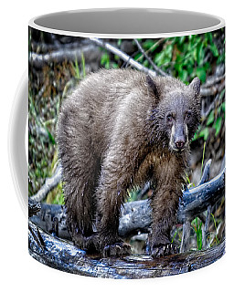 Coffee Mug featuring the photograph The Balance Beam by Jim Thompson