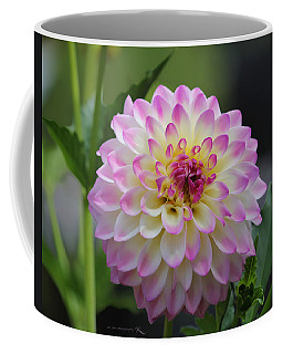 The Beautiful Dahlia Coffee Mug by Jeanette C Landstrom