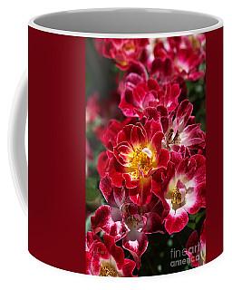 The Beauty Of Carpet Roses  Coffee Mug