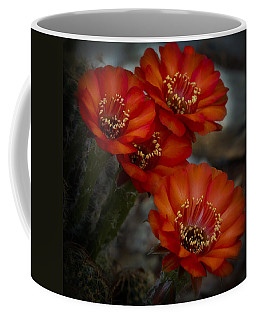 The Beauty Of Red Coffee Mug by Saija  Lehtonen