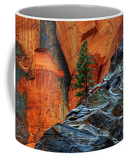 The Beauty Of Sandstone Zion Coffee Mug by Bob Christopher