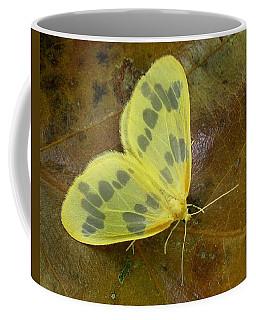 The Beggar Moth Coffee Mug