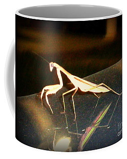 Coffee Mug featuring the photograph The Biggest Mantis I Ever Saw by Kelly Awad