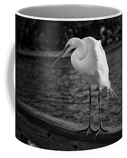 Coffee Mug featuring the photograph The Bird by Howard Salmon