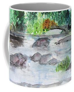 The Bog On Tupper Lake Coffee Mug