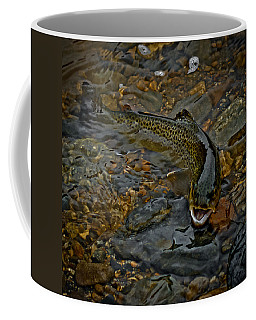 The Brown Trout Coffee Mug