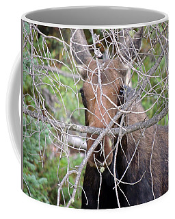 Coffee Mug featuring the photograph The Calf by Lynn Sprowl