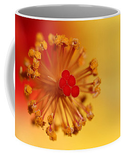 The Center Of The Hibiscus Flower Coffee Mug by Debbie Oppermann