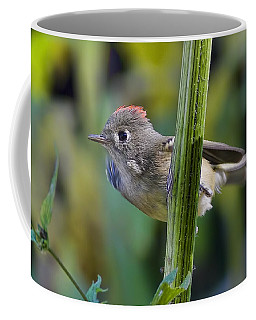 Coffee Mug featuring the photograph The Challenge by Gary Holmes