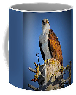 The Cheater Coffee Mug