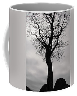 The Chill Of Spring In The Shenandoah Coffee Mug