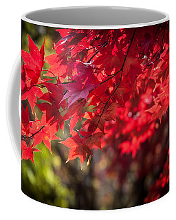 The Color Of Fall Coffee Mug by Patrice Zinck