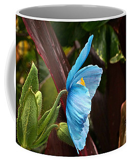 The Colors Of The Himalayan Blue Poppy Coffee Mug
