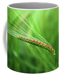 The Corn Coffee Mug