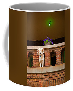 The Critic Coffee Mug
