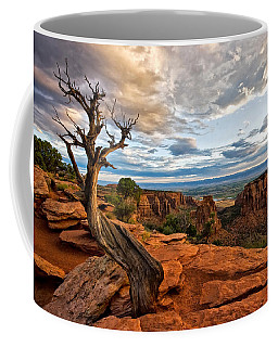 The Crooked Old Tree Coffee Mug