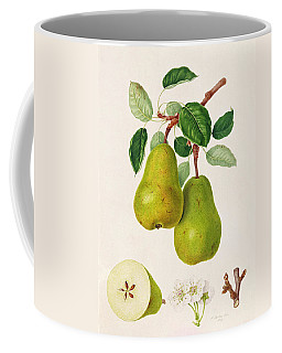 The D'auch Pear Coffee Mug