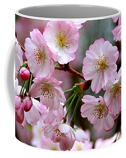 The Delicate Cherry Blossoms Coffee Mug by Patti Whitten