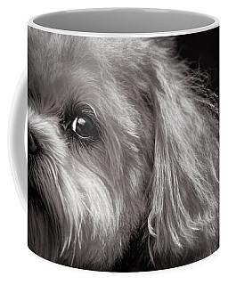 The Dog Next Door Coffee Mug