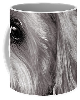 Coffee Mug featuring the photograph The Dog Next Door by Bob Orsillo