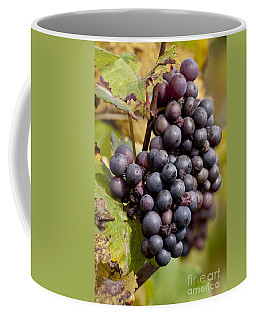 The End Of Grape Harvest Coffee Mug