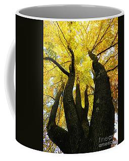 The Family Tree Coffee Mug